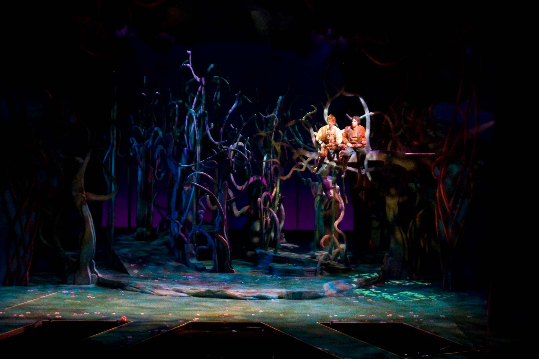 INTO THE WOODS Musical Design Set Design Scenic Design #SetDesign #ScenicDesign